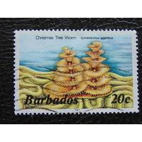 Барбадос 1987гг. Фауна.