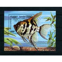 Камбоджа 1992г, аквариумные рыбки, 1 блок