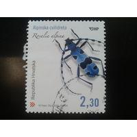Хорватия 2005 жук