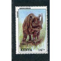 Кения. Носорог
