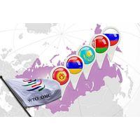 Дипломная - Государственное регулирование внешней торговли услугами в Республике Беларусь в контексте вступления во Всемирную торговую организацию - Мировая экономика