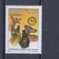 [1800] Перу 1988. Фауна.Собаки. Одиночный выпуск  MNH