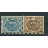 Тунис -музей- 1950г