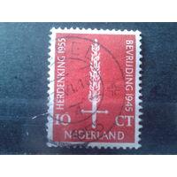 Нидерланды 1955 10 лет с окончания войны