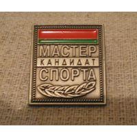 Кандидат в мастера спорта Республики Беларусь.