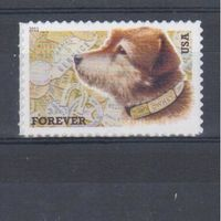 [831] США 2011. Фауна.Собака.
