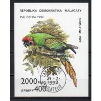 Попугаи Мадагаскар 1993 год 1 блок