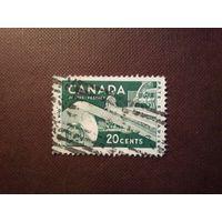 Канада 1956 г.Целлюлозно-бумажная промышленность.