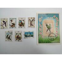 Афганистан 1985. Птицы. Полная серия из 7 марок и 1 Блока