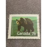 Канада 1976. Медведь Гризли
