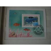 Марки по теме фауна, рыбы, блок, Мадагаскар, 1982