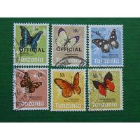 Танзания. Бабочки.