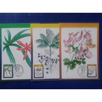 Бразилия 1994 Цветы, комплект картмаксимумов