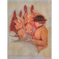 Жокей и лошади