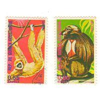 Экваториальная Гвинея. Обезьяны. 2 марки.