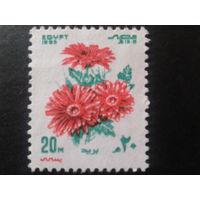 Египет 1983 фестиваль, цветы