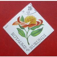 Бурунди. Цветок. ( 1 марка ).