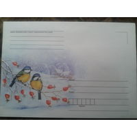 2008 не маркированный конверт Зима, синицы