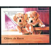 Гвинея - 1997г. - Собаки - полная серия, MNH [Mi bl. 514] - 1 блок