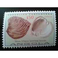 Ангола, колония Португалии 1974 ракушки
