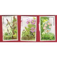 Кения 1983 Флора