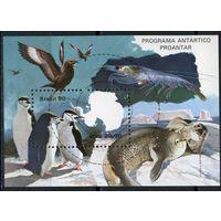 Бразилия 1990г, охрана антарктиды, 1блок.