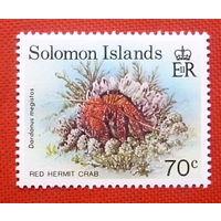 Соломоновы острова.  Морские обитатели. ( 1 марка ).