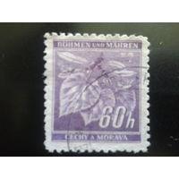 Рейх протекторат 1941 стандарт