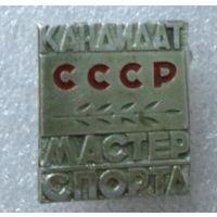 Кандидат мастер спорта СССР.