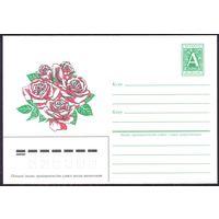 Беларусь 1996 хмк цветы розы