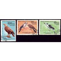 3 марки 1982 год Мадагаскар Птицы 887-889