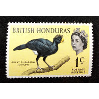 Британский Гондурас 1962 г. Птицы. Фауна, 1 марка. Чистая #0075-Ч1P5