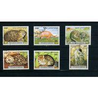 Камбоджа 1996г, дикие кошки, 6м.