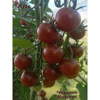 """Семена томата """"Черная Вишня"""" (черри)"""