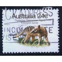 Австралия 1981 Mi# 754 (AU018) гаш.