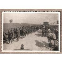 Фото времен немецкой оккупации. Июль 1941 г. 6х8.5 см.