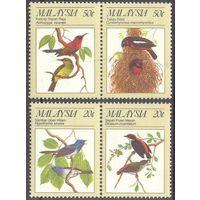 Малайзия фауна птицы