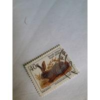 ЮАР марки