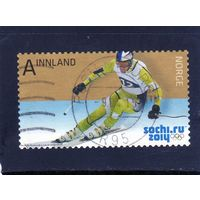 Норвегия.Горнолыжный спуск.Олимпийские игры.Сочи.2014.
