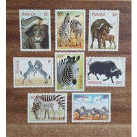 Руанда. 1984. Фауна. Зебры и Буйволы