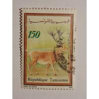 Тунис 1990г. Олень