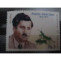 Пакистан 1999 энтомолог