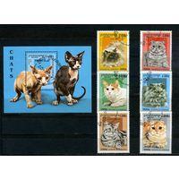 Камбоджа 1997г, кошки, 6м, 1 блок
