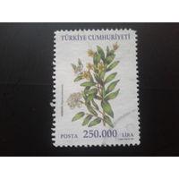 Турция 2001 цветы