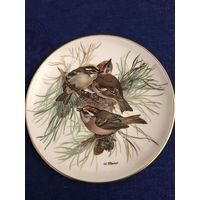 Тарелка настенная птицы Tirschenreuth
