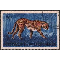 Кошки. Бурунди 1964. Гепард. Марка из серии