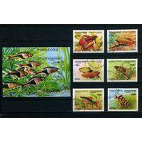 Камбоджа 1997г, аквариумные рыбки, 6м, 1 блок