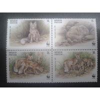 Киргизия 1999 Лисы-корсаки WWF квартблок