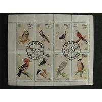 Оман 1972 Хищные птицы