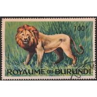 Кошки. Бурунди 1964. Лев. Марка из серии